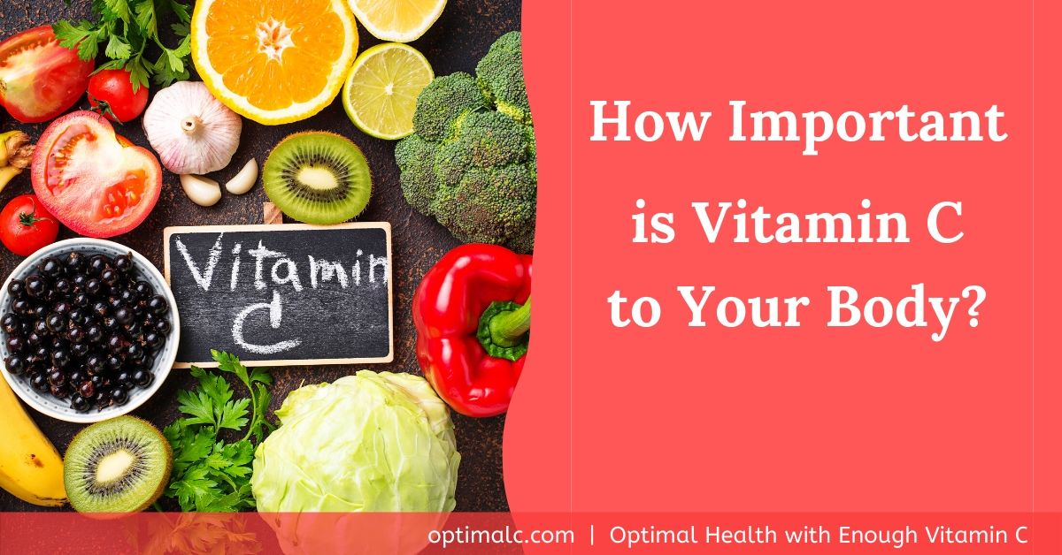 Importance of Vitamin C to the Body